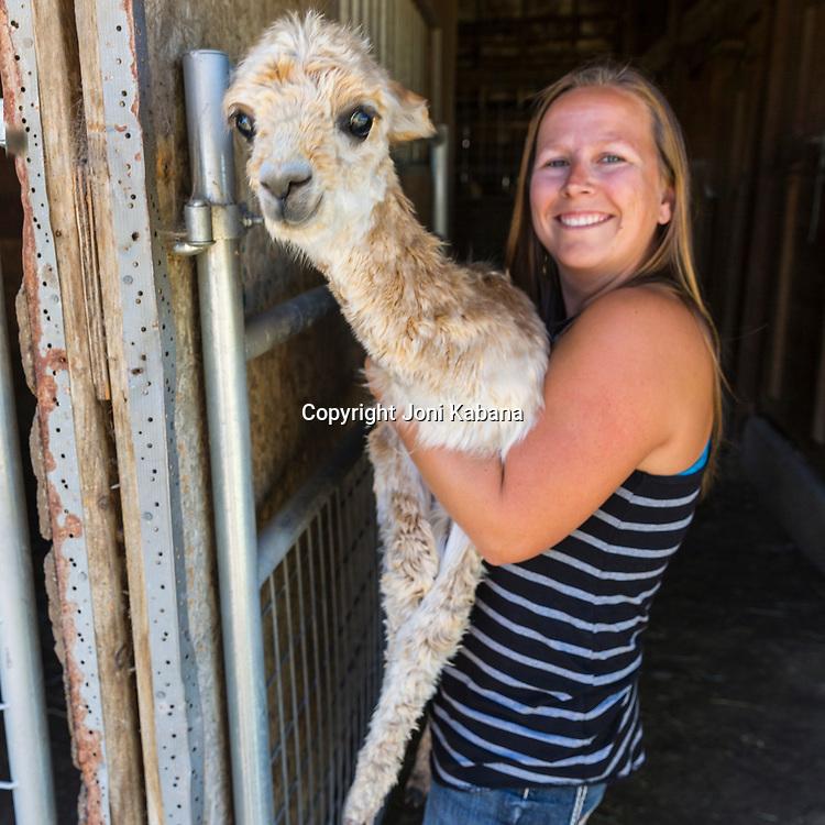 Old Homestead Alpacas, Milton-Freewater, Oregon (owner Elaine Vandiver)