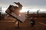 Navajo Children play on a practice rodeo bull on the Navajo Reservation in Arizona.