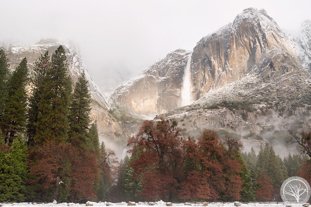 Yosemite Falls in fog and snow storm. Yosemite National Park, CA