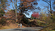Autumn colors along the drive on the east side of Central Park around 103rd street, New York City.