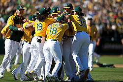 OAKLAND, CA - SEPTEMBER 22: The Oakland Athletics celebrate after the game against the Minnesota Twins at O.co Coliseum on September 22, 2013 in Oakland, California. The Oakland Athletics defeated the Minnesota Twins 11-7 as they clinched the American League West Division. (Photo by Jason O. Watson/Getty Images) *** Local Caption ***