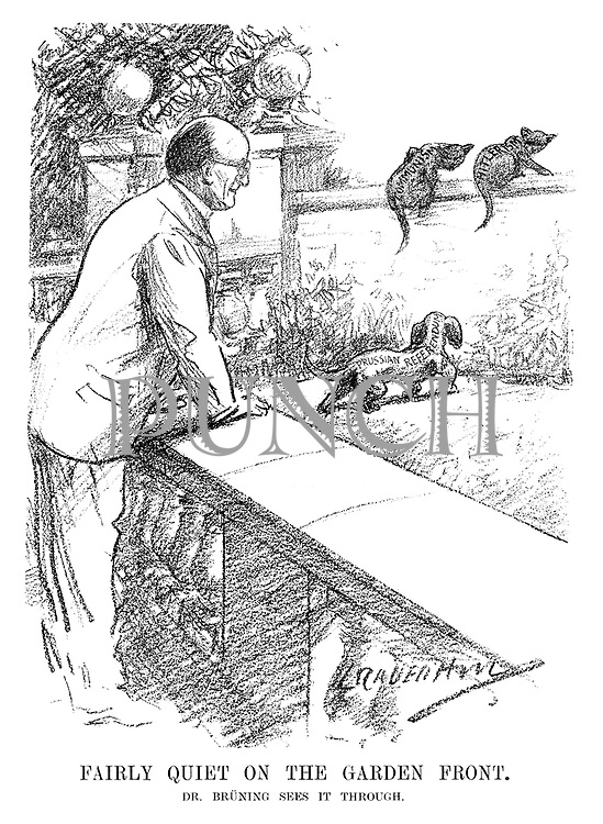 Fairly Quiet on the Garden Front. Dr Bruning sees it through. (an InterWar era cartoon shows Heinrich Bruning scaring off the Communsim and Hitlerism cats with his Prussian Referendum dog)