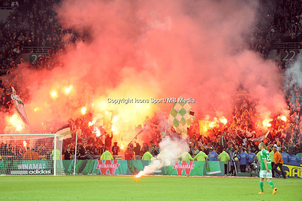 Supporters Saint Etienne - 23.05.2015 - Saint Etienne / Guingamp - 38e journee Ligue 1<br />