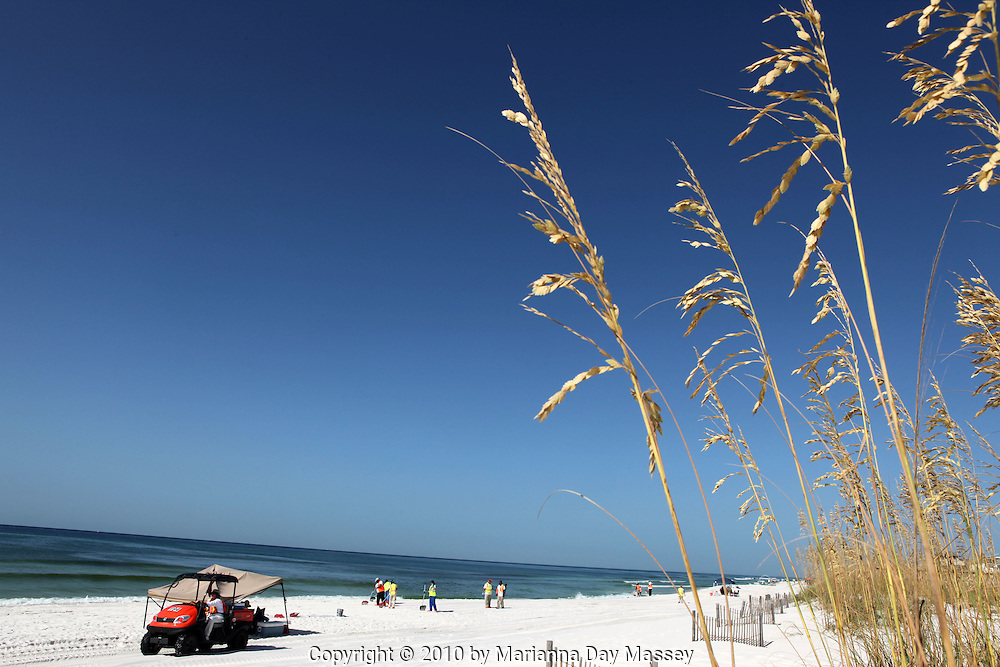 Jul 28, 2010 - Pensacola, Florida, U.S. - Oil spill cleanup crews hit the white sands of Pensacola Beach on Wednesday morning raking the sands and sifting for tar balls. Waves of gooey tar blobs were washing ashore in growing numbers on the white sand of the Florida Panhandle last week as slicks from the BP spill continued to drift  ashore. The tar balls came ashore after prevailing winds died and were replaced with heavy onshore winds. The tar balls washed up 15 feet at Pensacola Beach, which is already suffering from massive vacation cancellations. BP halted cleanup crews after a tropical storm threat but have reinstated efforts this week..(Credit Image: © Marianna Day Massey/ZUMApress.com)