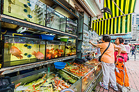 Kowloon, Hong Kong, China- June 9, 2014: people at the goldfish market in Mong Kok
