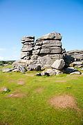 Granite upland landscape at Combestone Tor, near Hexworthy, Dartmoor national park, Devon, England