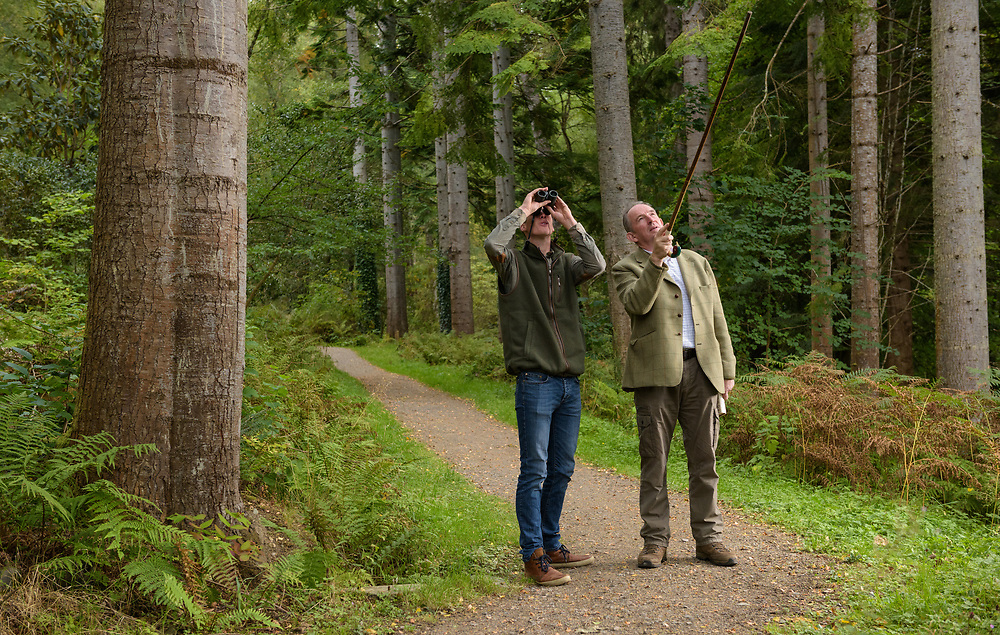 Visitors in grove of silver fir, Lael Gardens, Ullapool, Ross Shire, Forestry Commission Scotland