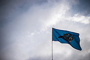 January 17, 2016: Carolina Panthers vs Seattle Seahawks. A Panthers flag waves