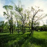 Greenwood Village, Colorado, Spring