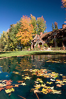 Fall Foliage in Fountain at Bourn Cottage, Empire Mine State Historic Park, Grass Valley, California
