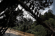 FDLR soldiers cross a river on a bamboo bridge on trek to their jungle camp in North Kivu, DRC, on Sunday, March. 16, 2008..The FDLR comprises Hutu extremists who fled Rwanda after their involvement in the 1994 genocide, as well as Hutu members of the former Rwandan army and a mix of displaced Rwandan Hutus. Numbering approximately 10,000, they have lived in the jungles of DRC for the past 14 years and in that time have resisted repeated calls for disarmament and repatriation.
