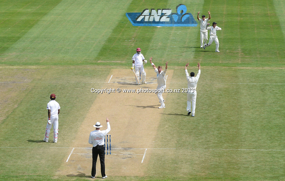 Corey Anderson celebrates the dismissal of <br /> Narsingh Deonarine on Day 4 of the 1st cricket test match of the ANZ Test Series. New Zealand Black Caps v West Indies at University Oval in Dunedin. Friday 6 December 2013. Photo: Andrew Cornaga/www.Photosport.co.nz