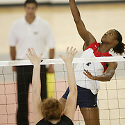 FAU Volleyball 2006