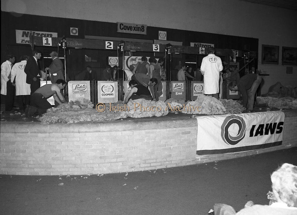 Sheep Shearing and Fleece Rolling Competition. (R57)..1987..07.05.1987..05.07.1987..7th May 1987..The International Sheep Shearing Championship was held today at the RDS in Dublin. A second part of the competition involved the rolling and tying of the fleece once the sheep is sheared...Picture shows the contestants working away on the stage,IAWS was the main sponsor of the Event..IAWS (Irish Agricultural Wholesale Society.