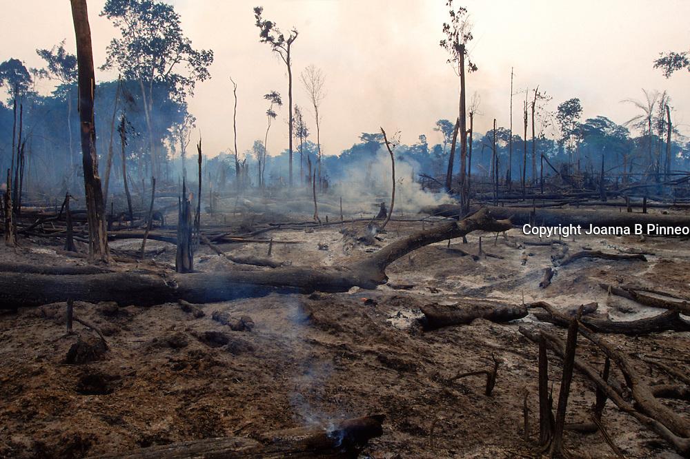 Brazil, smoldering rain forest.