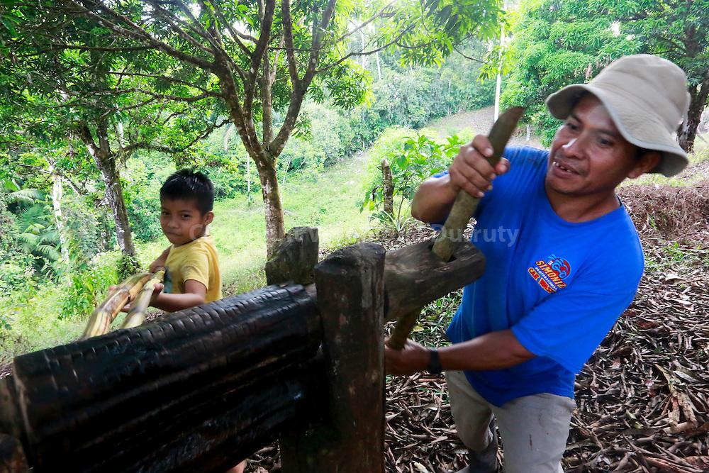 making sugar cane juice, Guaymi native reserve, Osa Peninsula, Costa Rica // Faire le jus de Canne, Reserve indigene Guaymi, Peninsule de Osa, Costa Rica