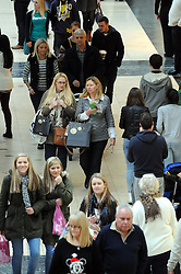 © Licensed to London News Pictures. 07/12/2013<br /> Bluewater Christmas Shopping.<br /> Christmas shoppers at Bluewater in Greenhithe, Kent today (07.12.2013) on the first Saturday in December.<br /> Photo credit :Grant Falvey/LNP