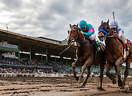 ARCADIA, CA - JANUARY 07: Gormley #5, ridden by Victor Espinoza, defeats American Anthem # 1, ridden by Mike Smith to win the Sham Stakes at Santa Anita Park on January 7, 2017 in Arcadia, California. (Photo by Alex Evers/Eclipse Sportswire/Getty Images)