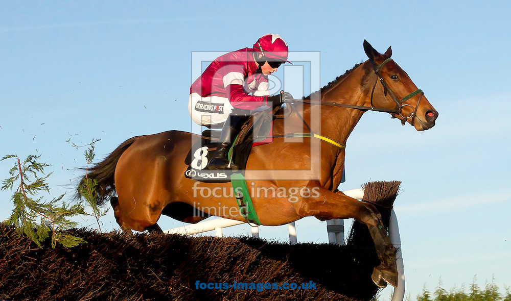 Bryan Cooper on Road to Riches wins the Lexus 'chase at the Christmas Festival at Leopardstown Racecourse, Leopardstown<br /> Picture by Lorraine O'Sullivan/Focus Images Ltd +353 872341584<br /> 28/12/2014