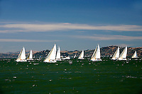 21 July 2007: View of sailboats on the water racing together near the Golden Gate Bridge, during a clear day in the San Francisco bay, CA.