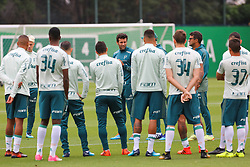 November 6, 2017 - Brazil - SAO PAULO, SP - 06.11.2017: TREINO DO PALMEIRAS - The technician Alberto Valentim talks with players during the training of Palmeiras held at the Club Soccer Academy in Sao Paulo (SP) (Credit Image: © Fotoarena via ZUMA Press)