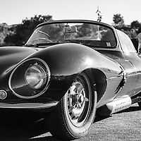 D-Type Jaguar