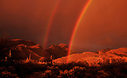A double rainbow highlights the Bear Canyon area in the Santa Catalina Mountains, Coronado National Forest, Sonoran Desert, Tucson, Arizona, USA.
