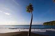 Surfer, Mataiva Bay, black sand beach, Island of Tahiti, French Polynesia<br />