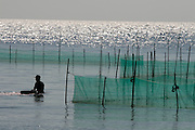 Phu Quoc Island. Oyster banks of a pearl factory.