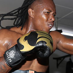 S'busiso Nkosi during the cell c sharks backs boxing pre season training session at  Growthpoint Kings Park ,18,01,2018 Photo by Steve Haag)