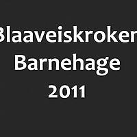 Blaaveiskroken_2011