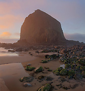 A rare coastal fog enshrouds Haystack rock, near Cannon Beach on the Oregon Coast. The basalt formation is a fragile habitat for unique coastal plants and marine birds. It is designated a Marine Garden, and is also part of the Oregon Islands National Wildlife Refuge.