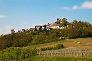 Talberg,  Deutsche Weinstraße, Rheinland-Pfalz, Deutschland.