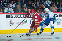 REGINA, SK - MAY 19: Artyom Minulin #5 of Swift Current Broncos back checks Antoine Morand #88 of Acadie-Bathurst Titan as he skates with the puck at the Brandt Centre on May 19, 2018 in Regina, Canada. (Photo by Marissa Baecker/CHL Images)