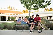 """Gamers play """"Pokemon Go"""" near Milpitas City Hall in Milpitas, California, on August 1, 2016. (Stan Olszewski/SOSKIphoto)"""