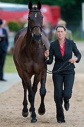 Karin Donckers (BEL ) - Maxwell Steele <br /> Vet inspection - CCI4* Luhmühlen 2012<br /> © Hippo Foto - Jon Stroud