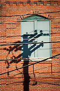 Powerlines and telephone pole shadow on brick building.