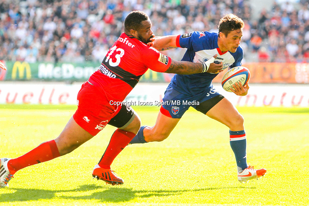 Jakson WILLISON  - 11.04.2015 - Grenoble / Toulon  - 22eme journee de Top 14 <br />