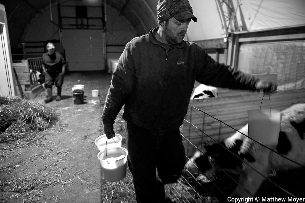 AUBURN, NEW YORK - MARCH 06: Ed Tidd, right, prepares to feed calves as his neighbor, John Miller looks on at the Tidd farm in Auburn, NY. Ed runs a small dairy farm with his father in upstate New York. They have been hit hard by the recent drop in milk prices. They recently had to get rid of their health insurance because it had gotten too expensive.