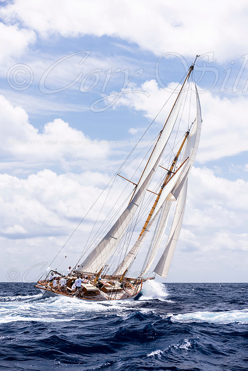 Juno sailing in the Antigua Classic Yacht Regatta, Old Road Race.