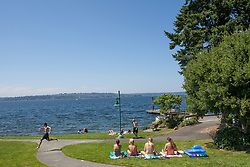 North America, United States, Washington, Kirkland, sunbathers on grass in Marsh Park on Lake Washington