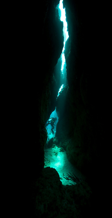 One of the best dives on Yap is the Canyons.  It is a quiet dive with little current, and has a labyrinth of canyons and swim throughs that are a joy to explore - Yap Micronesia (Photo by Matt Considine - Images of Asia Collection)