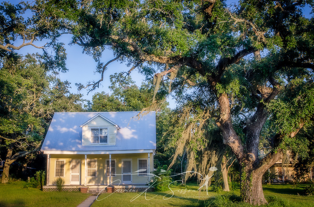 Spanish moss hangs from the trees in front of a house on Shell Belt Road in Coden, Alabama. (Photo by Carmen K. Sisson/Cloudybright)