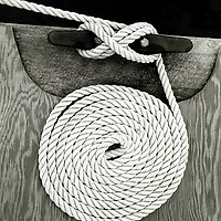 A coiled rope on a dock
