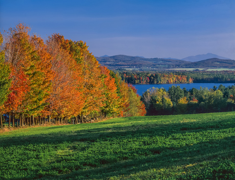 Lake Carmi and hillside in fall color, Mt Mansfield in distance, Franklin, VT
