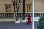 A monk circumambulates the temple of His Holiness the 14th Dalai Lama in Maclead Gange, Dharamshala, walking the Kora.