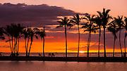 Sunset through silhouetted palms at Anaehoomalu Bay, Kohala Coast, The Big Island, Hawaii