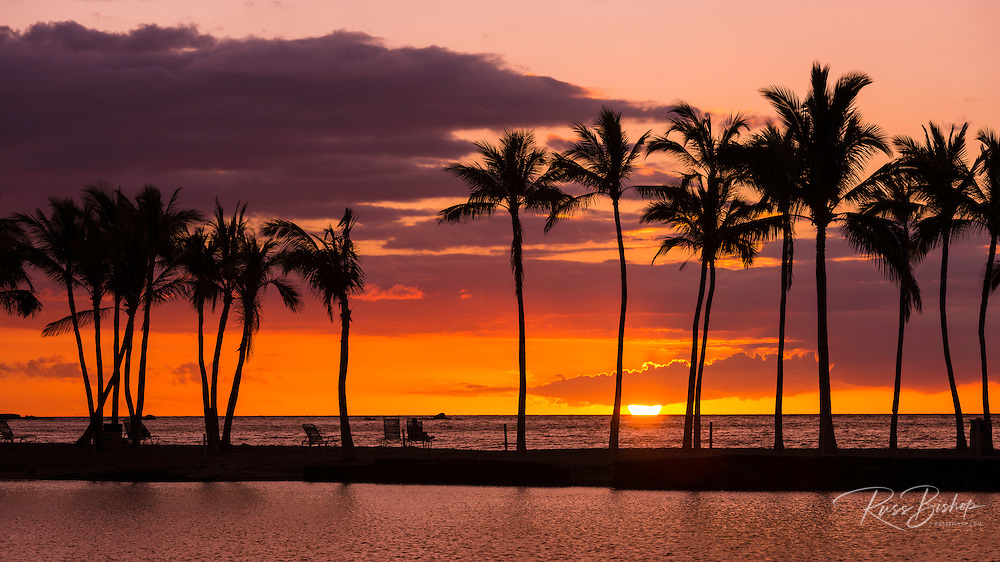 Sunset through silhouetted palms at Anaehoomalu Bay, Kohala Coast, The Big Island, Hawaii