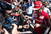 May 23, 2014: Monaco Grand Prix: Fernando Alonso (SPA), Ferrari