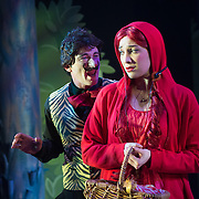 Red Riding Hood - The Pantomime, at Circa Theatre